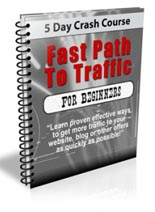 Fast Path To Traffic Newsletter