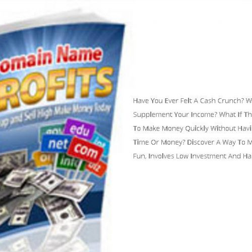 domian-name-profits-02